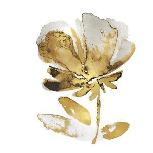 Fresh Bloom IV by Vanessa Austin