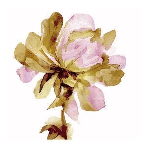 Fresh Bloom Pink I by Vanessa Austin