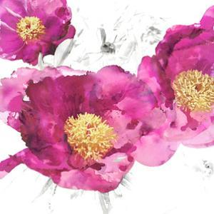 Pink Bloom I by Vanessa Austin