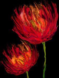Red Tulips II by Vanessa Austin