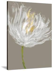 White Tulips I by Vanessa Austin