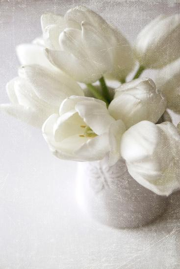 Vanishing in the White Elegance-Sarah Gardner-Photographic Print