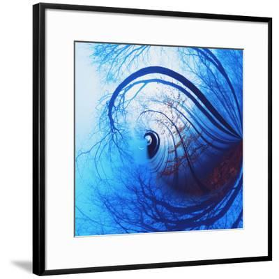 Variations on a Circle 12-Philippe Sainte-Laudy-Framed Photographic Print