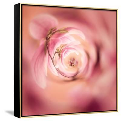 Variations On A Circle 19-Philippe Sainte-Laudy-Framed Canvas Print
