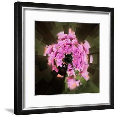 Variations on a Circle 24-Philippe Sainte-Laudy-Framed Photographic Print