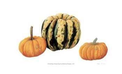 Variegata Squash & Miniature Pumpkins-Pamela Stagg-Limited Edition