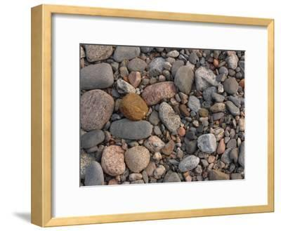 Variety of Stones and Pebbles on the Ground
