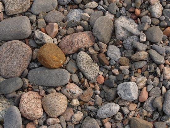 Variety of Stones and Pebbles on the Ground--Photographic Print