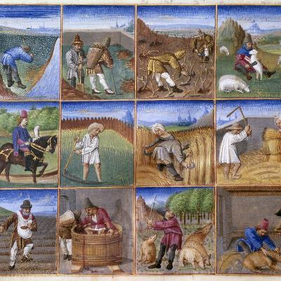Various Agricultural Works - by Colin D'amiens--Photographic Print