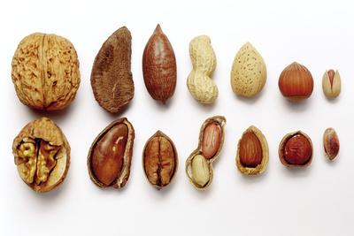 Various Nuts, Shelled and Unshelled-Eising Studio - Food Photo and Video-Photographic Print