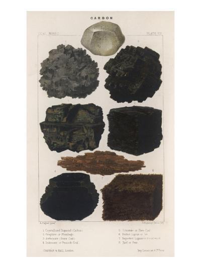 Various Types of Carbon Including Crystallised Diamond, Graphite, Slate Coal and Peat--Giclee Print