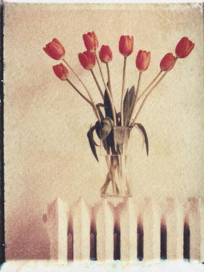 Vase of Tulips on a Radiator-Natalie Fobes-Photographic Print