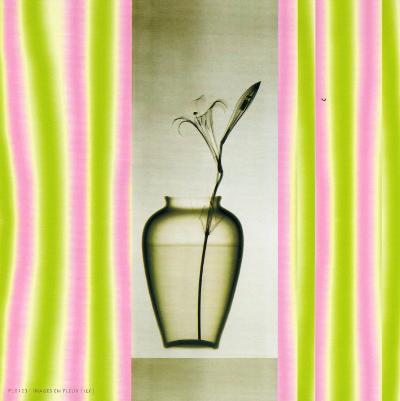 Vase on Pedestal--Art Print