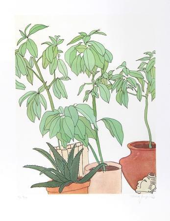 Still Life, Plants
