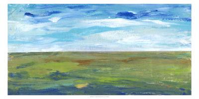 Vast Land II-Tim O'toole-Art Print