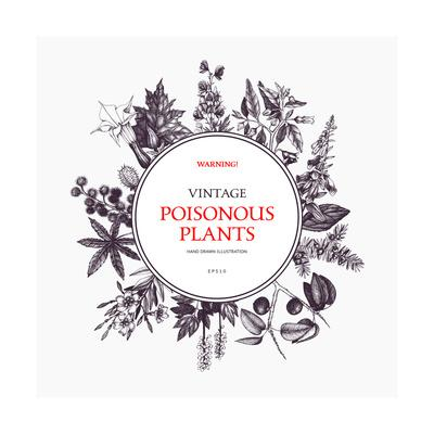 https://imgc.artprintimages.com/img/print/vector-frame-design-with-hand-drawn-poisonous-plants-vintage-noxious-plants-sketch-background-bot_u-l-q1alrz40.jpg?p=0