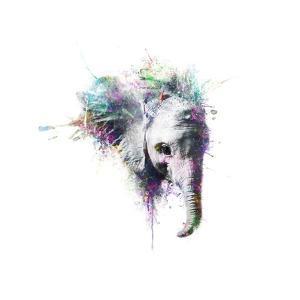 Elephant by VeeBee