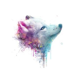 Fox by VeeBee