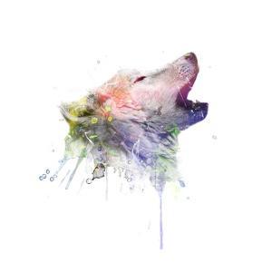 Wolf by VeeBee