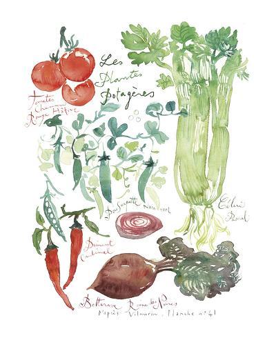 Vegetable Poster-Lucile Prache-Art Print