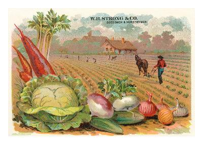 Vegetables, Old Fashioned Farm--Art Print