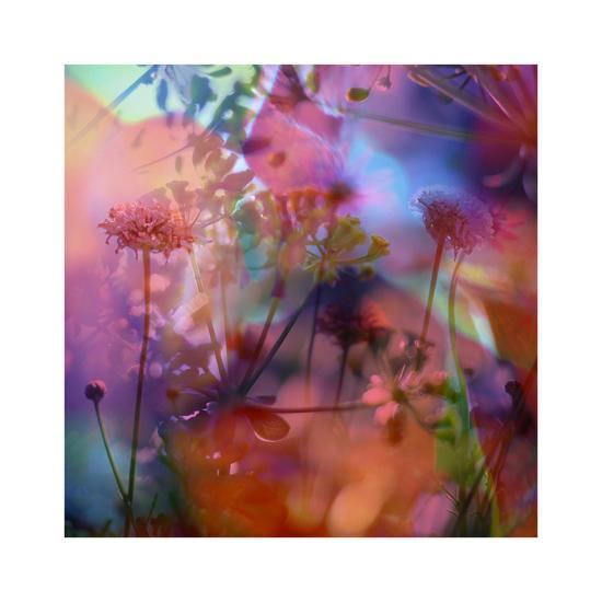 Vegetaux 21, 2012-Nicolas Le Beuan B?nic-Premium Giclee Print
