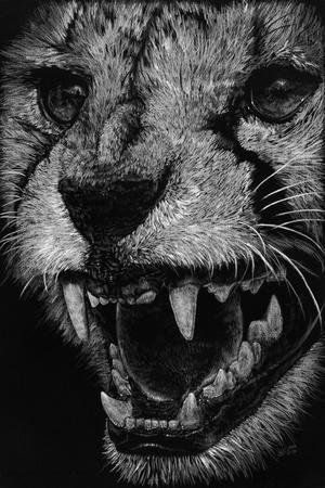 https://imgc.artprintimages.com/img/print/vehemence_u-l-pykafa0.jpg?p=0