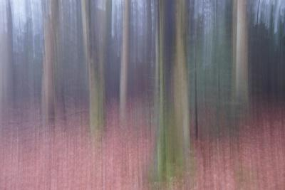 https://imgc.artprintimages.com/img/print/veil-the-light_u-l-q1gvwfk0.jpg?p=0