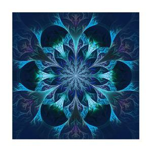 Beautiful Fractal Flower in Blue and Black by velirina