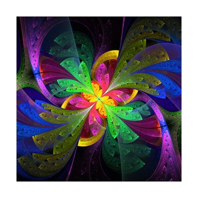 Multicolor Beautiful Fractal Flower