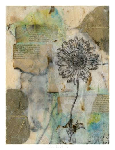 Vellum Floral I-Jennifer Goldberger-Giclee Print