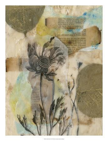 https://imgc.artprintimages.com/img/print/vellum-floral-ii_u-l-f6flr70.jpg?p=0