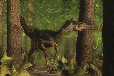 Velociraptor Dinosaur Stands Alert in an Araucaria Tree Forest-Stocktrek Images-Art Print
