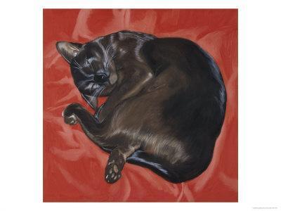 Velvet Cat I (Chat Velours I)-Isy Ochoa-Giclee Print