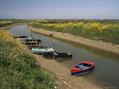 Vendee, Ile d'Olonne, Western Loire, Pays De La Loire, France-Michael Busselle-Photographic Print