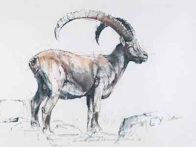 Venerando Stambecco, 2006-Mark Adlington-Giclee Print