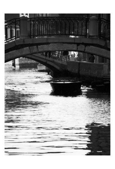 Venice 62-Jeff Pica-Art Print