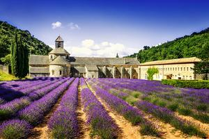 Abbey of Senanque by vent du sud
