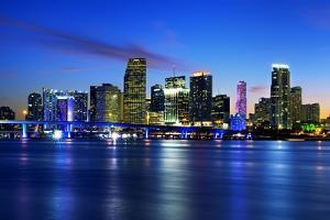 Miami City by Night by vent du sud
