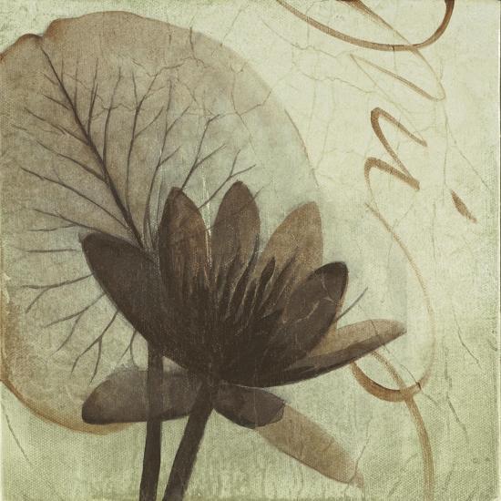 Verde Botanicals IV-Liz Jardine-Art Print