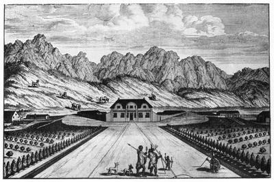https://imgc.artprintimages.com/img/print/vergelegen-wine-estate-south-africa-18th-century_u-l-ptm3u70.jpg?p=0