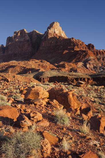 Vermilion Cliffs National Monument, Utah, Usa-Rainer Mirau-Photographic Print