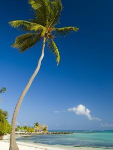 Beach at Punta Cana by Veronica Garbutt