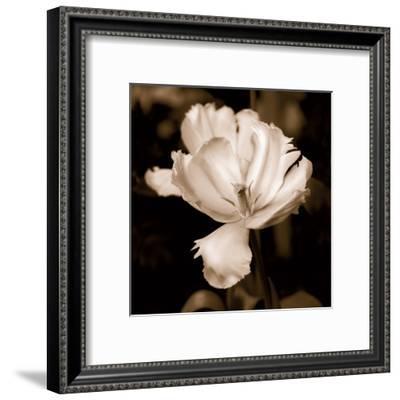 Veronica's Garden II-Kelly Donovan-Framed Art Print