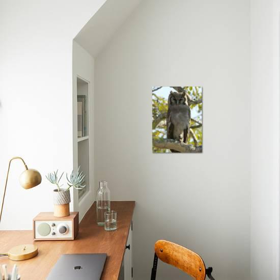 Verreaux S Eagle Owl Bubo Lacteus Or Milky Eagle Owl In A Tree Photographic Print Paul Sutherland Art Com