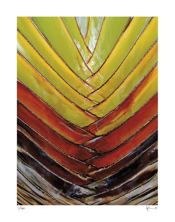 https://imgc.artprintimages.com/img/print/vertical-color-palm_u-l-f6b28c0.jpg?p=0