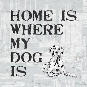 Home Is Where My Dog Is by Veruca Salt