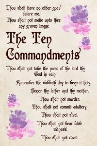 The Ten Commandments - Floral by Veruca Salt