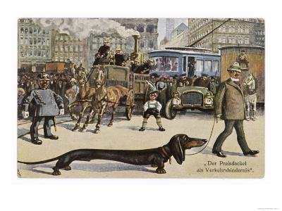Very Long Dachshund Causes a Problem for Traffic When It Crosses the Road with His Owner--Giclee Print