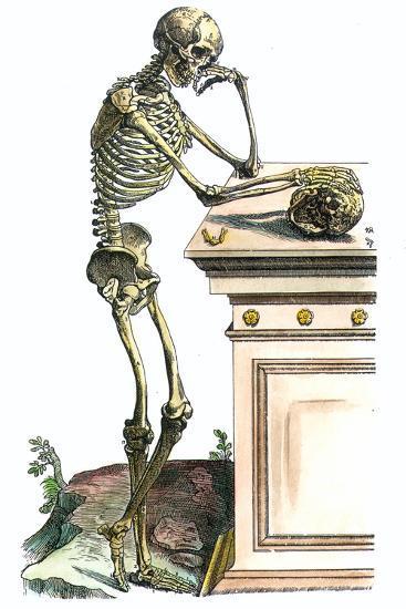 Vesalius: Skeleton, 1543-Andreas Vesalius-Giclee Print
